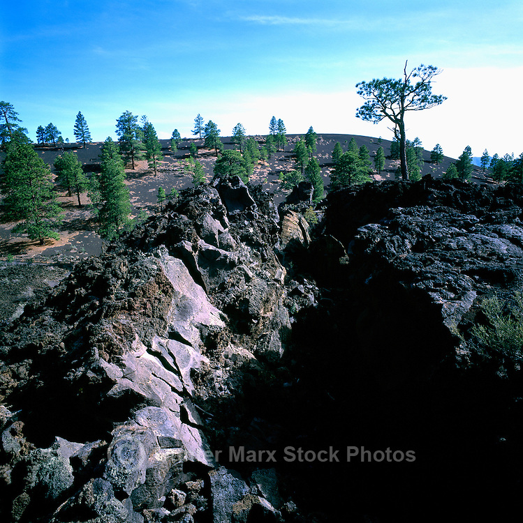 Hardened Lava Flow at 'The Squeeze-Up' in Sunset Crater Volcano National Monument, near Flagstaff, Arizona, USA