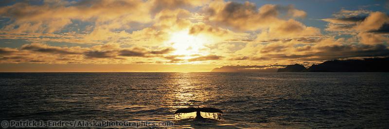Humpback whale sounds in Hinchinbrook Entrance, Prince William Sound, Alaska