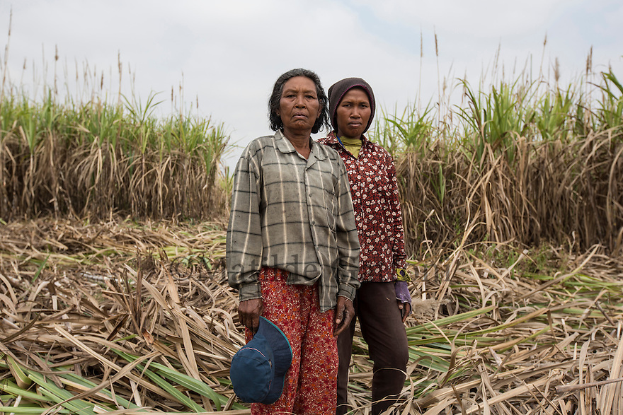 "Cambodia - Kampong Speu Province - Chei Reoun, 35, and her mother Hai Morn, 64 standing in the sugarcane plantation where they work daily as labourers. They both come from Kork. In 2010, they were both stripped of their land. Chei was forced to accept a compensation of 70,000 riel (around 17 USD) for 1,5 hectares of land, after the commune chief warned her that the company would have taken her land with or without her consent. ""With the plantation, they told us that the work would have knocked at our door. It is true, but the work is just about sweating and cutting all day long"" she complains. While Chei is still able to pay for the school fees of her three children, she is growing worried about their future. ""Without land, they will grow poorer and poorer"" she says."