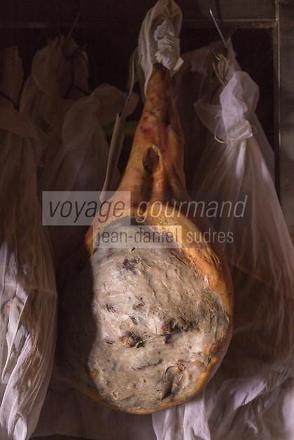 France, Pyrénées-Atlantiques (64), Pays-Basque, Saint-Jean-le-Vieux, Maison Mayté, Eric Mayté et ses jambons Ibaïama  dans son séchoir // France, Pyrenees Atlantiques, Basque Country, Saint Jean le Vieux,    Maison Mayté, Eric Mayté with  Ibaïama  ham, in the  séchoir, ham aging facility<br />  [Non destiné à un usage publicitaire - Not intended for an advertising use]