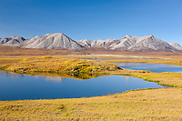 Tundra pond in Atigun Canyon, Endicott Mountains of the Brooks Range, Arctic, Alaska.