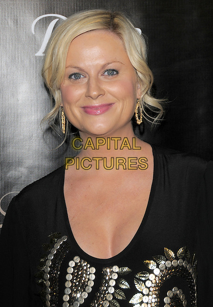 AMY POEHLER.The Gracie Awards Gala held at The Beverly Hilton Hotel in Beverly Hills, California, USA..May 25th, 2010           .headshot portrait black gold hoop earrings                                                         .CAP/RKE/DVS.©DVS/RockinExposures/Capital Pictures.