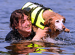 Emily Cudworth of Tolland, swims with her 14 year old dog Princess, the dogs advancing age makes it hard for her to swim like she use to so Cudworth put her on her shoulder which was something the dog wasn't quite sure about, Tuesday, July 19, 2011, at Bolton Lake in Bolton. (Jim Michaud/Journal Inquirer)