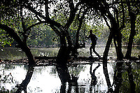 "A man walks through a mangrove forest in the north-west of Jakarta. According to the Jakarta Post, ""it is now only a matter of time before mangroves are totally erased from the map of Jakarta — a victim of unbridled urbanization and industrialization programs initiated by the government""."