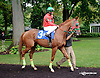 Nour Layoun before The Tax Free Shopping Distaff on Owners Day at Delaware Park on 9/13/14