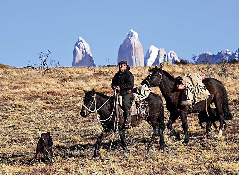 Chilean cowboy leading pack horse in Southern Chile Patagonia