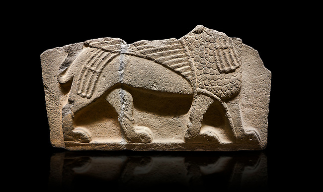 Hittite monumental relief sculpted orthostat stone panel from Water Gate Basalt, Karkamıs, (Kargamıs), Carchemish (Karkemish), 900-700 B.C. Anatolian Civilizations Museum, Ankara, Turkey.<br /> <br />  A portion of the body and the feet of the Sphinx. Its chest was processed as fish flakes. Parallel lines on its wings draw attention.<br /> <br /> On a black background.