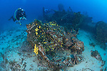 "The wreck of the B24 Liberator ""Tulsamerican"", Vis, Croatia, which lies between 40 and 55 metres"