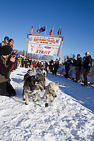 Sunday, March 4, 2012  Kirk Barnum's dogs lunge forward as they leave the Restart of Iditarod 2012 in Willow, Alaska.