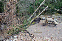 Damage from 2006 Flood at Sunshine Point Campground Picnic area, Mount Rainier National Park, Washington State.