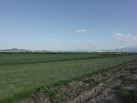 AG_LOCATION_65048