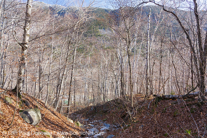 "This is the landslide path just above the ""Willey Boulders"" in Crawford Notch in Hart's Location, New Hampshire. The ""Willey Boulders saved the Willey House from destruction on August 28, 1826 when a massive landslide came down Mount Willey. These boulders were located just above the house and caused the landslide to split into two debris flows around the house. The house was said to be untouched, but all seven members of the family and two hired men perished in the slide while trying to escape to a safe area."