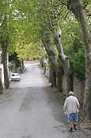 Montpeyroux. Languedoc. France. Europe.