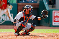 Delmarva Shorebirds catcher Steel Russell (19) during the South Atlantic League game against the Greensboro Grasshoppers at NewBridge Bank Park on May 26, 2013 in Greensboro, North Carolina.  The Grasshoppers defeated the Shorebirds 11-2.  (Brian Westerholt/Four Seam Images)