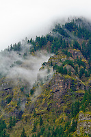 Tall mountain crags and columnar basalt outcroppings are seen with tall evergreen trees and moss on the rocks shrouded in foggy mist decending down the mountain