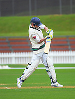 Action from the Governor-General's XI cricket match against Wanderers Cricket Club at the Hawkins Basin reserve, Wellington, New Zealand on Friday, 3 November 2017. Photo: Dave Lintott / lintottphoto.co.nz