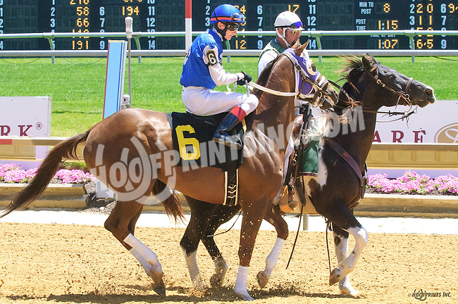 Warleigh at Delaware Park on 6/13/16