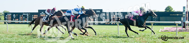 Bluegrass Chat winning at Delaware Park on 10/2/13