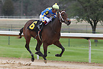 January 24, 2020: Gold Street with jockey Martin Garcia aboard during the Smarty Jones Stakes at Oaklawn Racing Casino Resort in Hot Springs, Arkansas on January 24, 2020. Justin Manning/Eclipse Sportswire/CSM