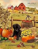 GIORDANO, STILL LIFE STILLLEBEN, NATURALEZA MORTA, paintings+++++,USGI2733/1,#I# autumn,harvest pumpkins