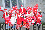Listowel Parade:Members of the Listowel Lady Birds & Brownies who took part in the Santa Claus parade in Listowel on Sunday last.