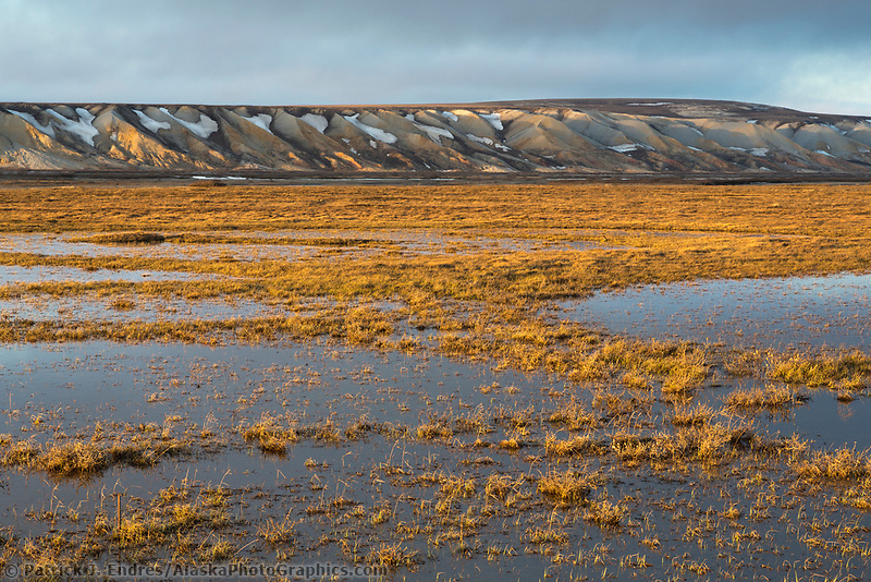 Tundra wetlands on the arctic north slope of Alaska, Franklin bluffs.