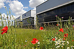 Pix: Shaun Flannery/shaunflanneryphotography.com...COPYRIGHT PICTURE>>SHAUN FLANNERY>01302-570814>>07778315553>>..31st May 2011.................Sheffield Business Park, Europa Link, Sheffield..Site photography.