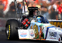 Oct 5, 2013; Mohnton, PA, USA; NHRA top fuel dragster driver Brandon Bernstein during qualifying for the Auto Plus Nationals at Maple Grove Raceway. Mandatory Credit: Mark J. Rebilas-