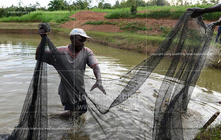 KENYA Kisumu, Tilapia fish farming in pond / KENIA Kisumu, GIZ Trilateral Tilapia Projekt, Foerderung von Tilapia Aquakultur in Fischteichen, Fisch Farm von Frau Zinad Deen