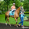 She's Ordained before The Dashing Beauty Stakes at Delaware Park racetrack on 6/12/14