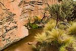 Creek in dry puna, Ciudad de Piedra, Andes, western Bolivia