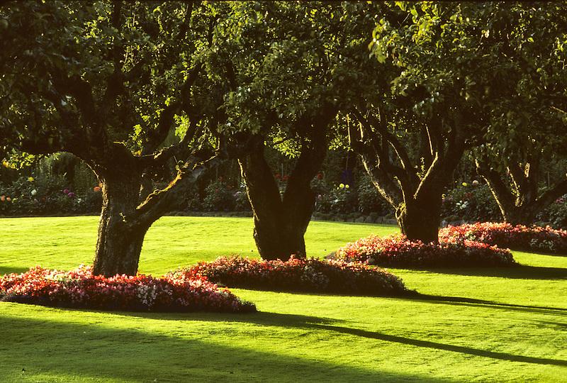 Flowers circling apple trees. Butchart Gardens. Victoria, British Columbia, Canada.