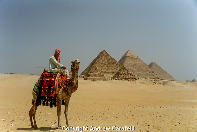 A camel rider pauses before the Pyramids of Giza.