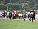 April 9, 2011.Horses leave the gate for The Providencia Stakes as Santa Anita Park, Arcadia, CA