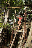 USA, Hawaii, The Big Island, Donica Shouse hangs climbs and hangs out in a banyan tree in Hilo near the Singing Bridge