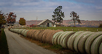 Round hay bales line the drive to a farm near Jasper Arkansas near the Buffalo National River.