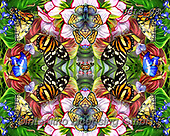 Lori, REALISTIC ANIMALS, REALISTISCHE TIERE, ANIMALES REALISTICOS, paintings+++++Butterflies In the Garden_Kaleidoscope_72,USLS08,#A#, EVERYDAY ,puzzles