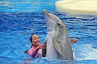 """Delphin mit Trainerin bei der Show """"Blue Horizon"""" im Sea World Orlando"""