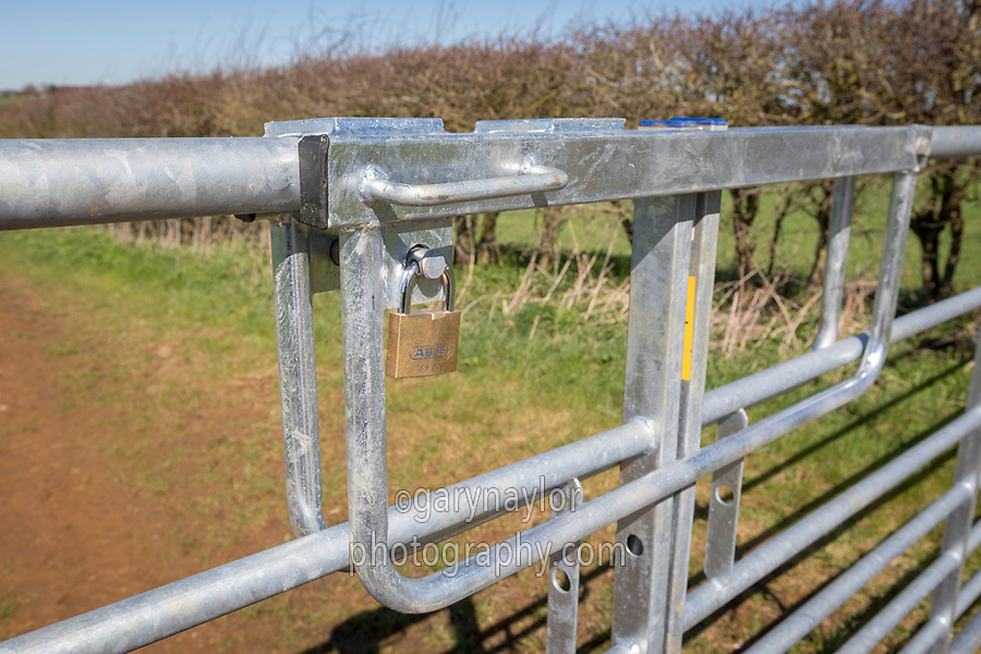 Farm gate with padlock