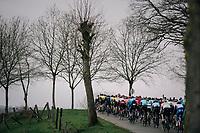 peloton<br /> <br /> 71th Kuurne-Brussel-Kuurne 2019 <br /> Kuurne to Kuurne (BEL): 201km<br /> <br /> ©kramon