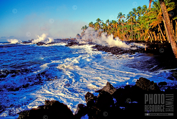 New black sand is formed as lava enters the frothy sea surrounded by tall coconut palm trees at Kaimu Bay, Kalapana on the Big Island of Hawaii.