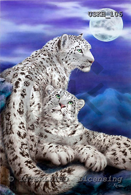 Kayomi, REALISTIC ANIMALS, paintings, snow leopard, Nocturne_M, USKH105,#A# realistische Tiere, realista, illustrations, pinturas