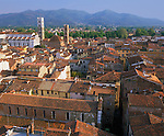 Lucca, Tuscany, Italy<br /> Tiled roofs of Lucca's city center with the towers of San Martino and San Giovanni