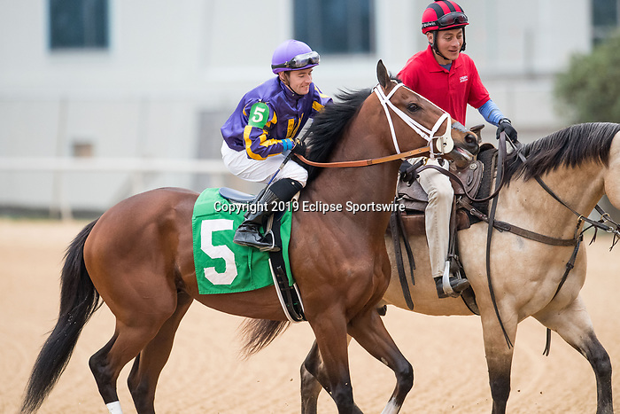 February 17, 2020: American Butterfly (5) with jockey Declan Cannon aboard during the Southwest Stakes at Oaklawn Racing Casino Resort in Hot Springs, Arkansas on Feburary 17, 2020. Ted McClenning//Eclipse Sportswire/CSM