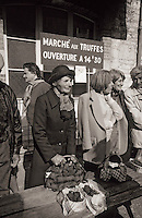 Europe/France/Midi-Pyrénées/46/Lot/Causse de Limogne/Lalbenque : Le marché aux truffes [Non destiné à un usage publicitaire - Not intended for an advertising use]