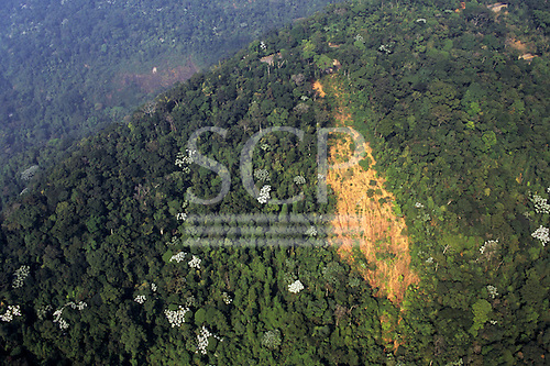 Rio State, Brazil. High view of Mata Atlantica rainforest; partly deforested area of hills; erosion.