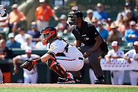 Baltimore Orioles catcher Chance Sisco (15) and home plate umpire Ramon De Jesus during a Grapefruit League Spring Training game against the Tampa Bay Rays on March 1, 2019 at Ed Smith Stadium in Sarasota, Florida.  Rays defeated the Orioles 10-5.  (Mike Janes/Four Seam Images)