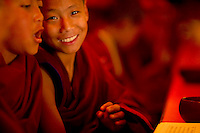 Buddhist student monk in a monastery, Sikkim, India