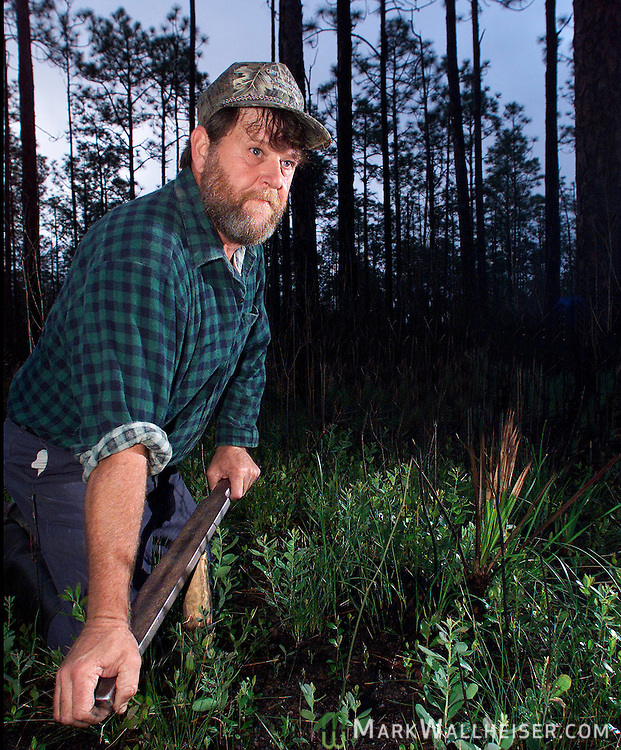 Worm grunter Gary Revell plys his trade in the Apalachicola National Forest as dawn breaks this morning.  Revell and his wife Audrey grunt worms for their livelyhood in western Wakulla County by driving a wooden stake in  the ground and forcing a steel rod back and forth across it producing a sound like a long low grunt and sending vibrations through the ground that drive earthworms to the surface where they are collected.