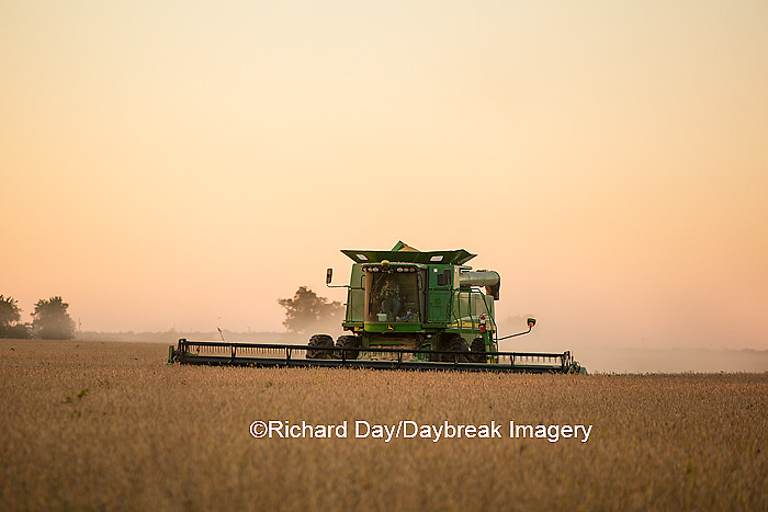 63801-07115 Farmer harvesting soybeans at sunset, Marion Co., IL